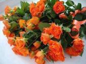 Trand portocalii